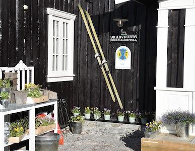 STF Tänndalen/Skarvruet Mountain station
