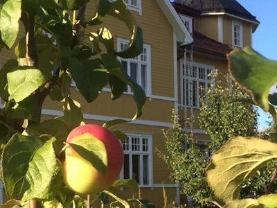STF Älvdalen/Tre Björnar Hostel