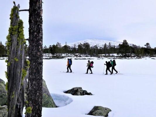 Grövelsjön - Turskidåkarvecka Stugtur Rogen runt
