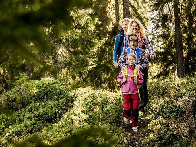 Naturkul i Bergslagen för hela familjen