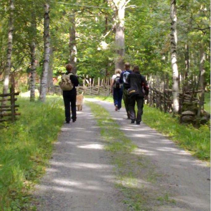 2-dagars vandringspaket i Långasjö