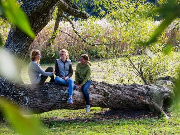 Vandra i Tyresö & Tyresta nationalpark