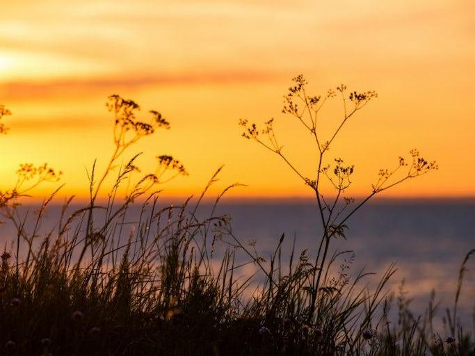 Naturdagar på Öland