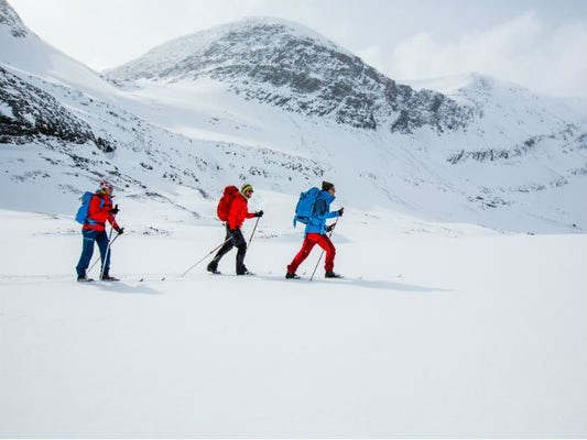 The Kings Trail Abisko-Kebnekaise: On Nordic Backcountry Skis