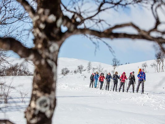 Jämtlandstriangeln med guide