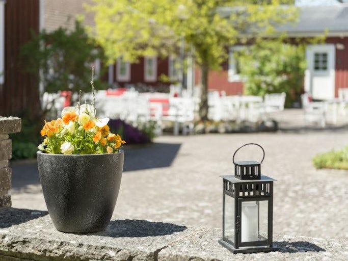 Möt våren på Öland
