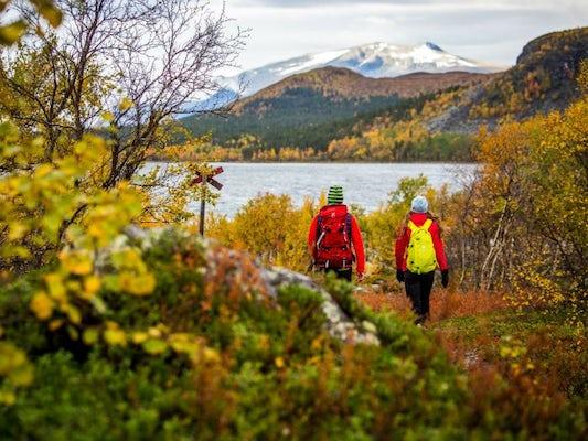 Jämtland - Vålådalsfyrkanten med guide