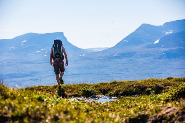 Abisko - Classic hikes; With guide