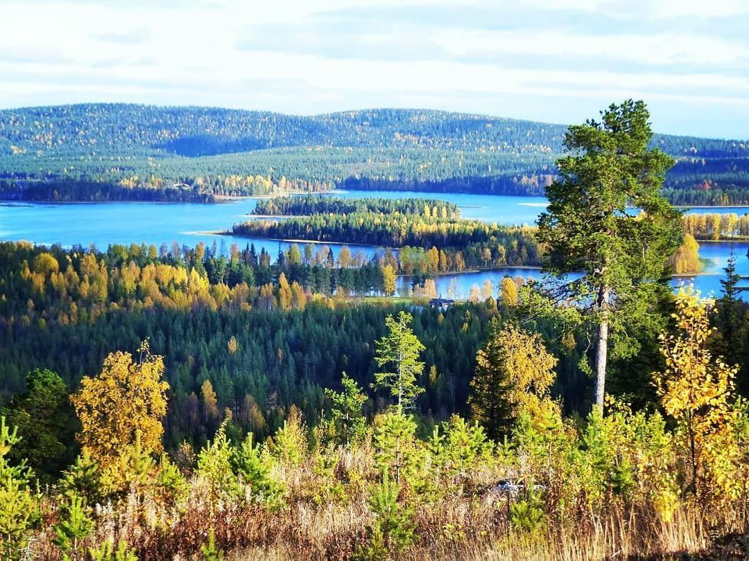 Fishing permit, Jokkmokk municipality (2018) - 7 days   NatureIT