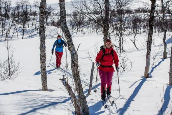 Abisko - First Mountain Tour
